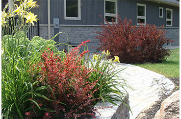 Coldwater Landscaping
